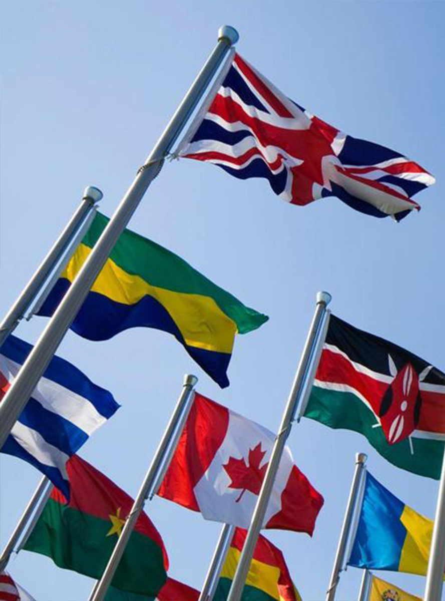 Zastave na drogovih